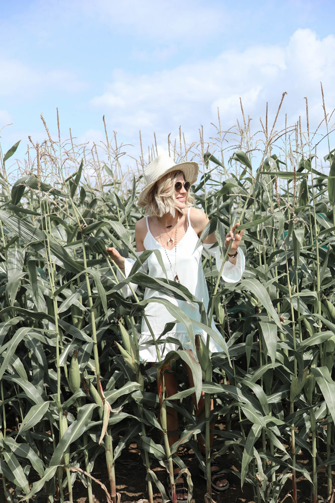 Summer look in corn fields (+Code promo inside)